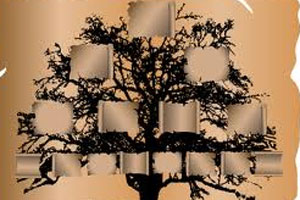 Drzewo genealogiczne 18
