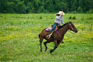 Jechać (na koniu lub innym zwierzęciu)