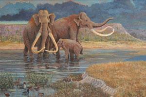 Znaczenie snu mamut