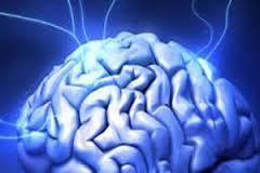 Znaczenie snu mózg