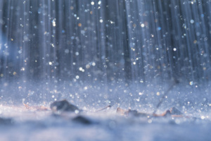 Znaczenie snu złoty deszcz